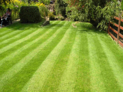 Gardening services flat cleaning services london ltd for Garden cleaning services