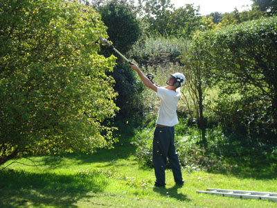 gardening-services1